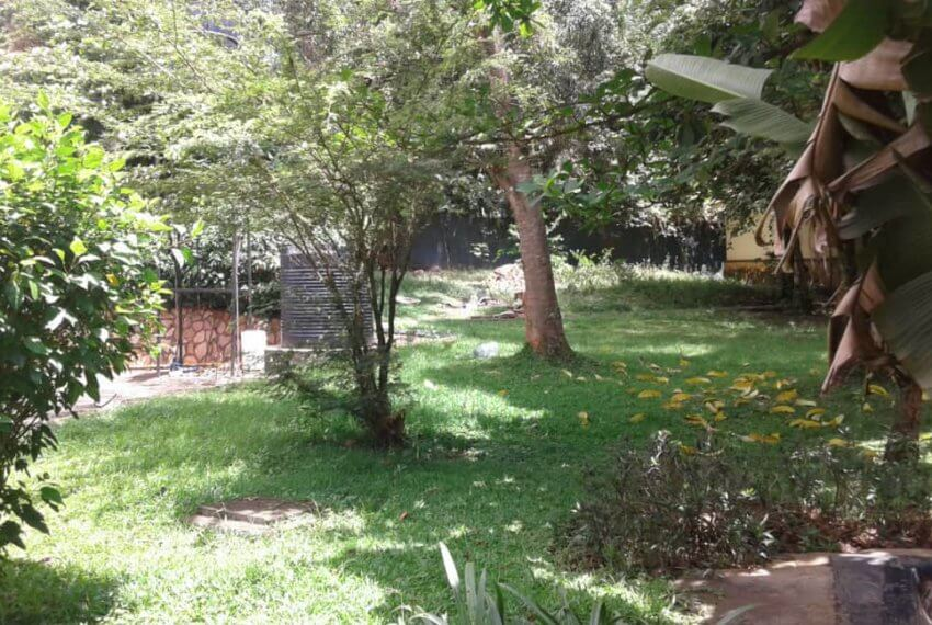 Kololo House for Rent