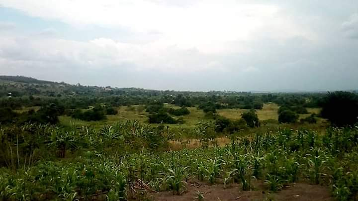 500 acres of land for sale in Kikyusa Tema