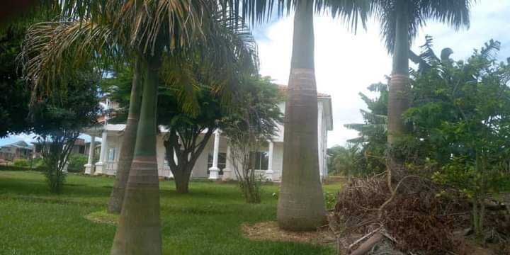 Lakeside Mansion for Sale in Nalugala Entebbe Road 3